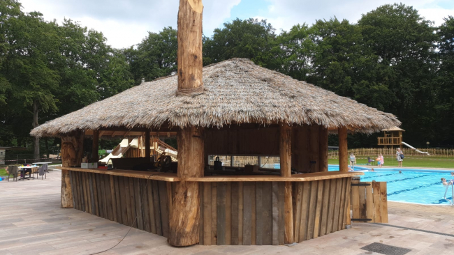Coconut thatch